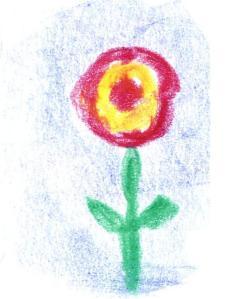 tekening cholericus 7