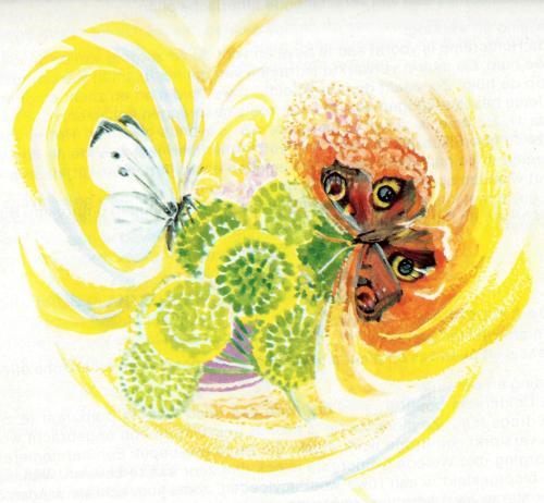 vlinder en bloem