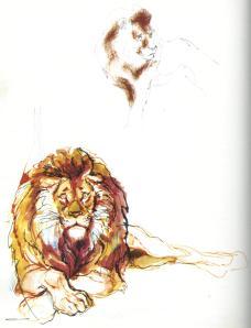 dierkunde leeuw 5