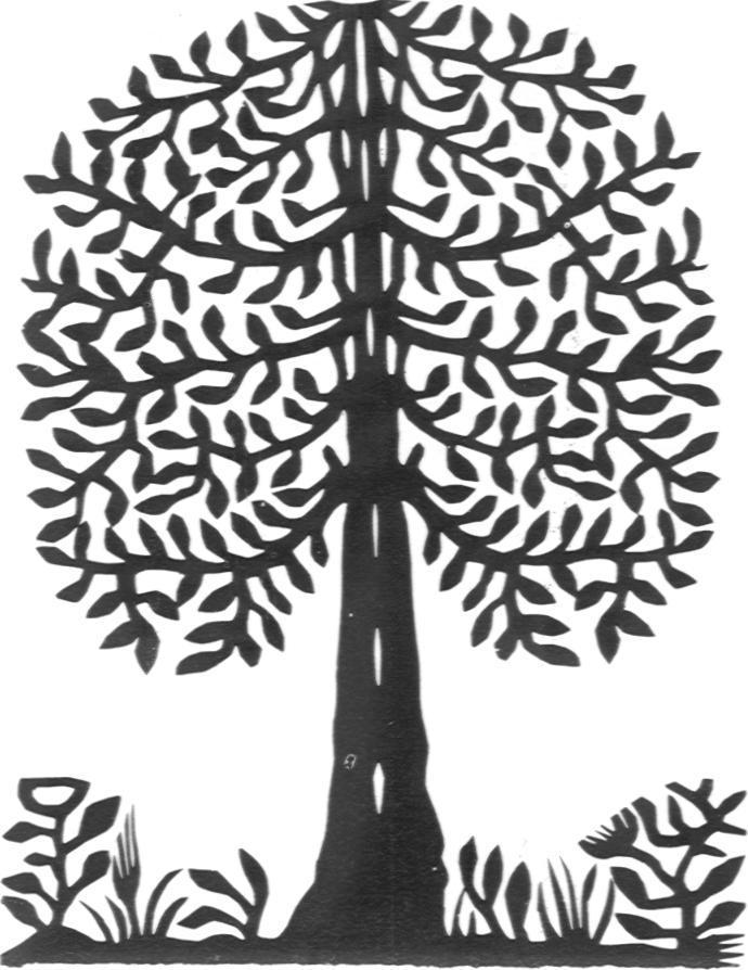 stjan-levensboom-4.jpg