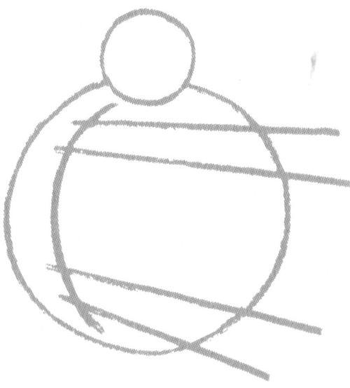 dierkunde Steiner 3
