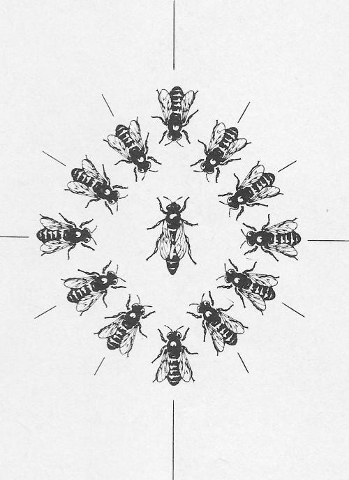 kerst bijen