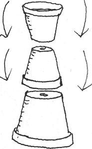 driekoningen bloempot 1