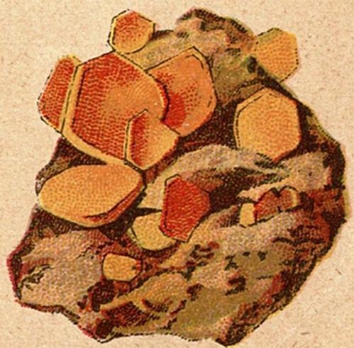 looderts geel