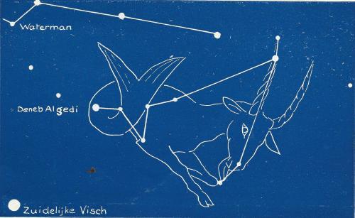 steenbok, zuidervis