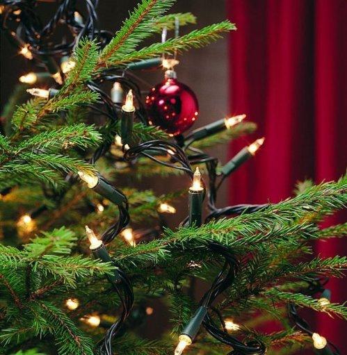 kerstboomverlichting 2