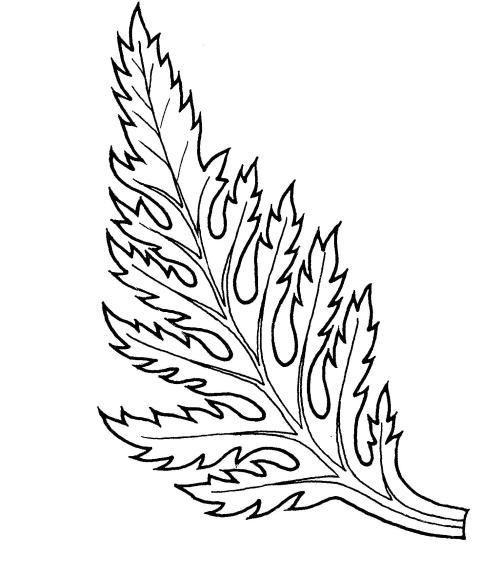plantendelen 23