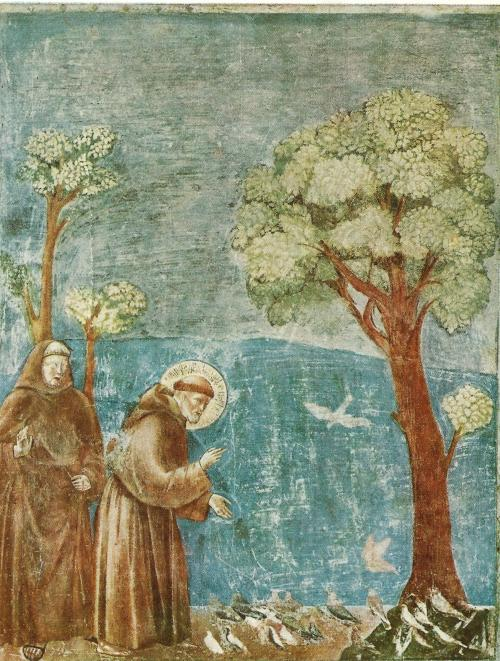 Giotoo di Bondone ca 1266-1337: St.-Franciscus met de vogels