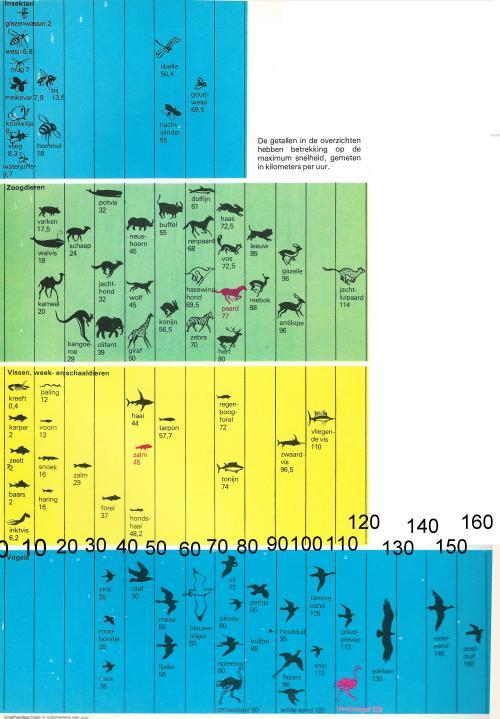 snelheid dieren 1 - 0014
