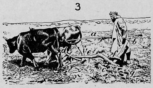 landbouw 3