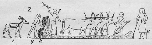 landbouw 7