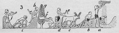 landbouw 8