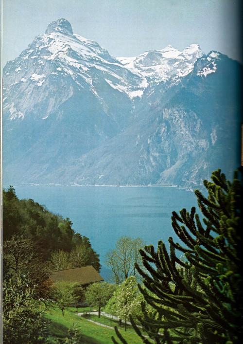 berglandschap Alpen